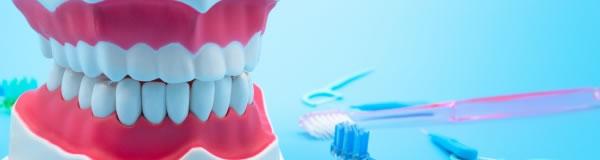 歯科医療の拡大